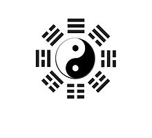Yin & Yang, I Ching, China, Chinese, Martial Arts, BLACK by TOM HILL - Designer