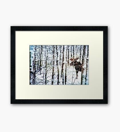 Painted Moose Framed Print