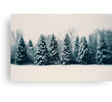 Winter and Woods Canvas Print