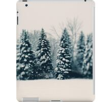 Winter and Woods iPad Case/Skin
