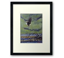 Eagle River Framed Print