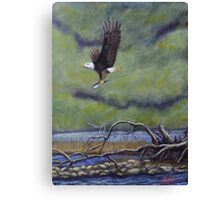 Eagle River Canvas Print
