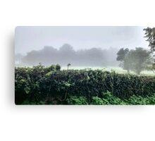Misty Green Scene Canvas Print