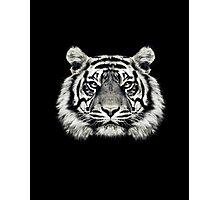 Tiger Portrait Photographic Print