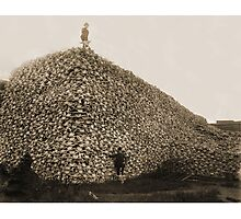 American Bison Skulls Pile to be used for fertilizer (c 1870) Photographic Print