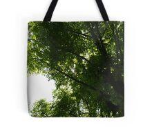 Light Through Trees Tote Bag