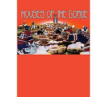 Houses of the Goalie 2015 Photographic Print