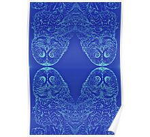 Blue Owl Mirror Poster
