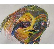 ericTHEwilson sloth Photographic Print