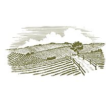 Woodcut Countryside Photographic Print