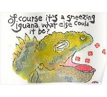 Sneezing Iguana Poster