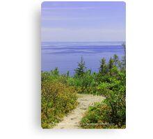 The Path To Purple Canvas Print