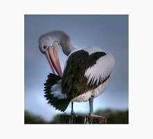 Picky Patient Pelican Preening on Pole in Pool Classic T-Shirt