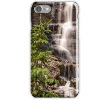 Bear Creek Beauty iPhone Case/Skin