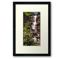 Bear Creek Beauty Framed Print