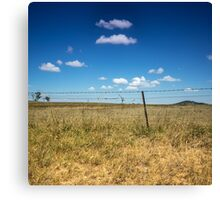 Golden Grass and Blue Skies Canvas Print