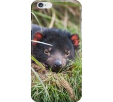 Tasmania Devil iPhone Case/Skin