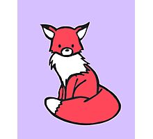 Little Red Fox Photographic Print
