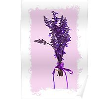 Purple Salvia - Digital Oil Poster