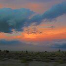 High Desert Sunset by Barbara  Brown