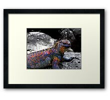 My Color Is A Pigment Of Your Imagination Framed Print