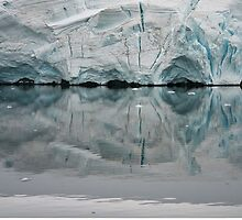 Glacier Reflections ~ Antarctica by Robert Elliott