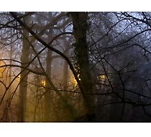 Day 1 - New Year's Morning 2016 Photographic Print