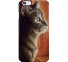 Callie Boy, tabby cat iPhone Case/Skin