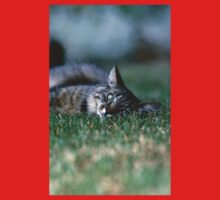 """Chat - Cat """" Tchink boom"""" 03 (c)(t) ) by Olao-Olavia / Okaio Créations 300mm f.2.8 canon eos 5 1989  Baby Tee"""