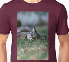 """Chat - Cat """" Tchink boom"""" 03 (c)(t) ) by Olao-Olavia / Okaio Créations 300mm f.2.8 canon eos 5 1989  Unisex T-Shirt"""