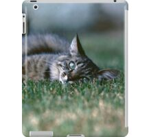 "Chat - Cat "" Tchink boom"" 03 (c)(t) ) by Olao-Olavia / Okaio Créations 300mm f.2.8 canon eos 5 1989  iPad Case/Skin"