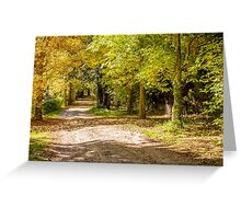 Country Laneway - Autumn Greeting Card