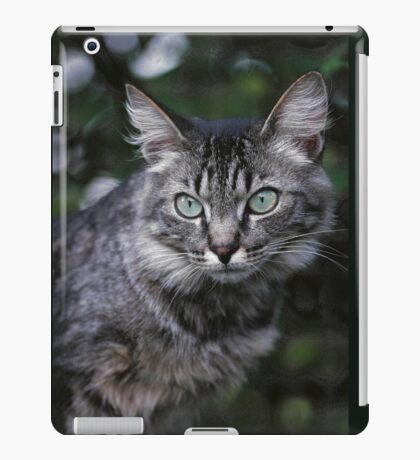"""Chat - Cat """" Tchink boom"""" 04 (c)(t) ) by Olao-Olavia / Okaio Créations 300mm f.2.8 canon eos 5 1989  iPad Case/Skin"""