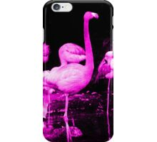 Hot Pink Flamingos iPhone Case/Skin