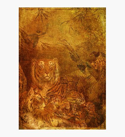 Burnished Tigers Photographic Print