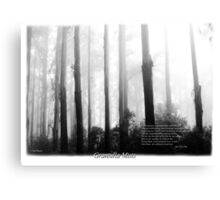Misty Mountain Ash Sherbrooke Forest Canvas Print