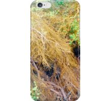 Dying branches in life iPhone Case/Skin