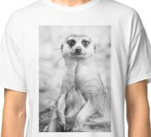 Meerkat portrait Classic T-Shirt
