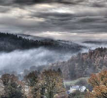 Mist Over the Forest by David Tinsley