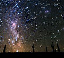 Star Trails over Atacama Desert Cacti by EarthMoonStars