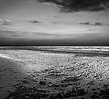 Low Tide by cclaude