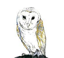 The Golden Owl by kroksg
