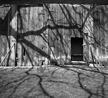 Tree at the Barn by Daniel Regner