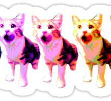sansa cat pattern Sticker