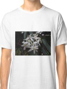 Stephanotis floribunda   Classic T-Shirt
