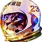 Astronaut Space Cat (deep galaxy version) by robotface