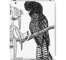Red Tailed Black Cockatoo  iPad Case/Skin