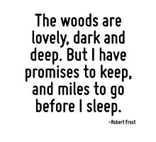 The woods are lovely, dark and deep. But I have promises to keep, and miles to go before I sleep. by TerrificPenguin