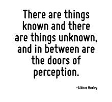 There are things known and there are things unknown, and in between are the doors of perception. by TerrificPenguin