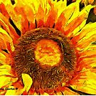 You Are My Sunshine by Bunny Clarke